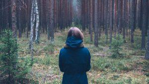 aloneinforest